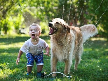 Play with pets and enjoy the immense pleasure