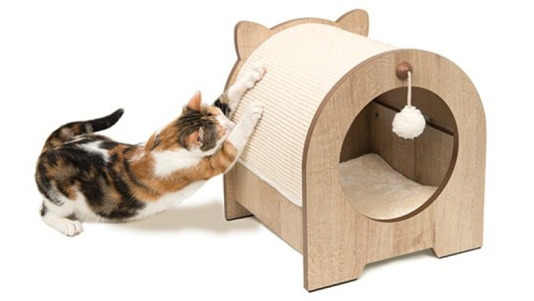 Cat Towers: The Options and Uses