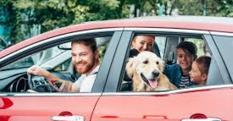 How to move across the country with your Pets?