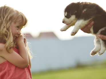 4 Tips for New Puppy Owners