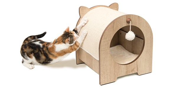 Cat Towers The Options and Uses